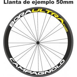 Adhesivos bicicleta CAMPAGNOLO BORA ULTRA TWO
