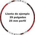 Pegatinas llantas bici mtb calcas stickers PROGRESS vinilos ruedas